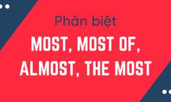 Phân biệt, cách dùng Most, Most of, Almost và The Most trong tiếng Anh