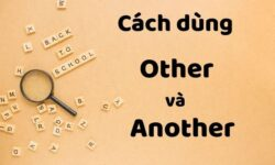 Phân biệt cách sử dụng Other, Another, The Other, Each Other, One Another