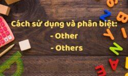 Cách sử dụng và phân biệt Other & Others