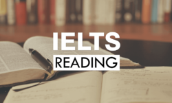 Lộ trình học IELTS Reading cho người bắt đầu đến 8.0