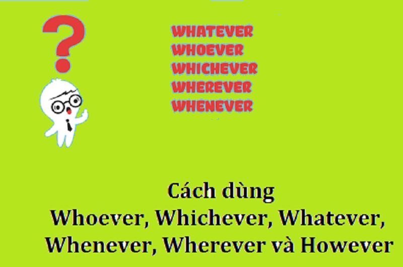 Một số từ và cụm từ kết hợp với ever khác