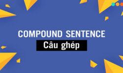 Cách sử dụng câu ghép trong tiếng Anh
