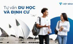 Tổng hợp các trung tâm tư vấn du học New Zealand uy tín tại Tp.HCM