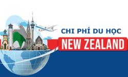 Du học New Zealand cần bao nhiêu tiền?
